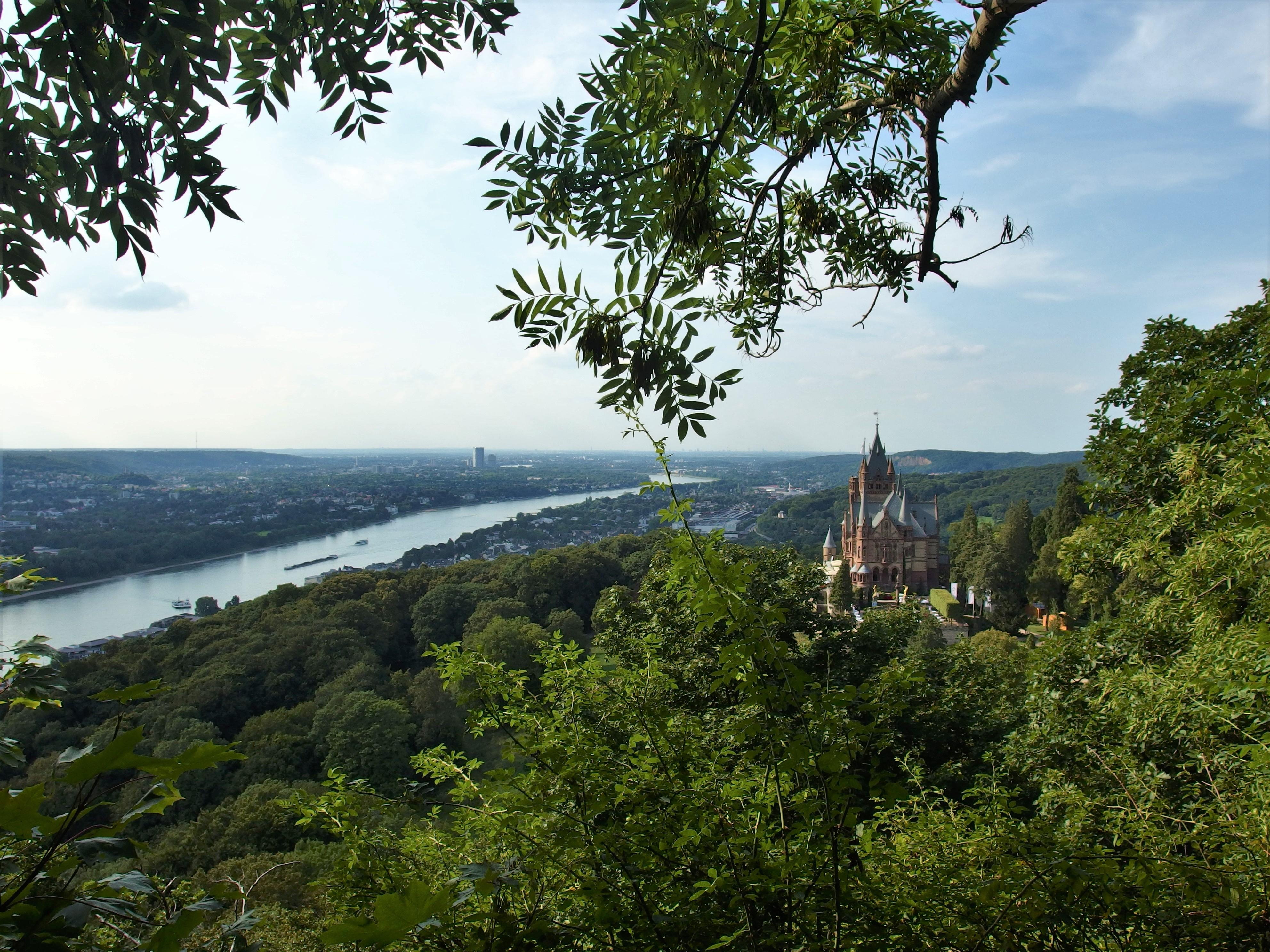 Uitzicht op de berg bij kasteel Drachenfels, vlakbij Bonn (Foto: Meeke Roet)
